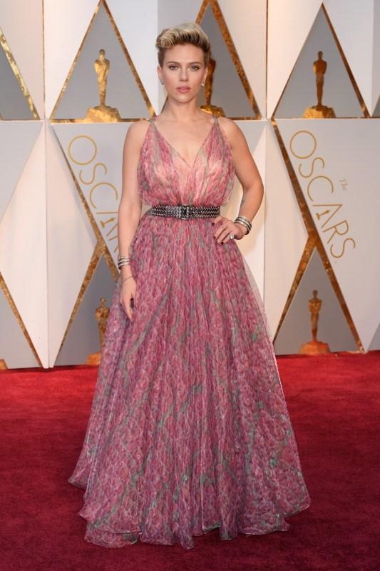 2017 Academy Awards Stars On The Red Carpet Gallery Wonderwall Com