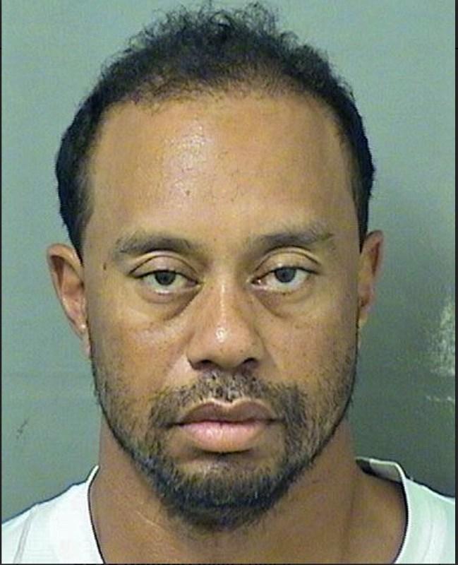 Tiger Woods DUI mugshot May 2017