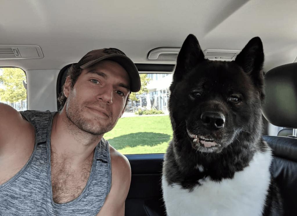 Henry Cavill, dog Kal