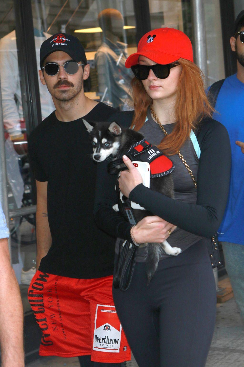 Sophie Turner and Joe Jonas, dog