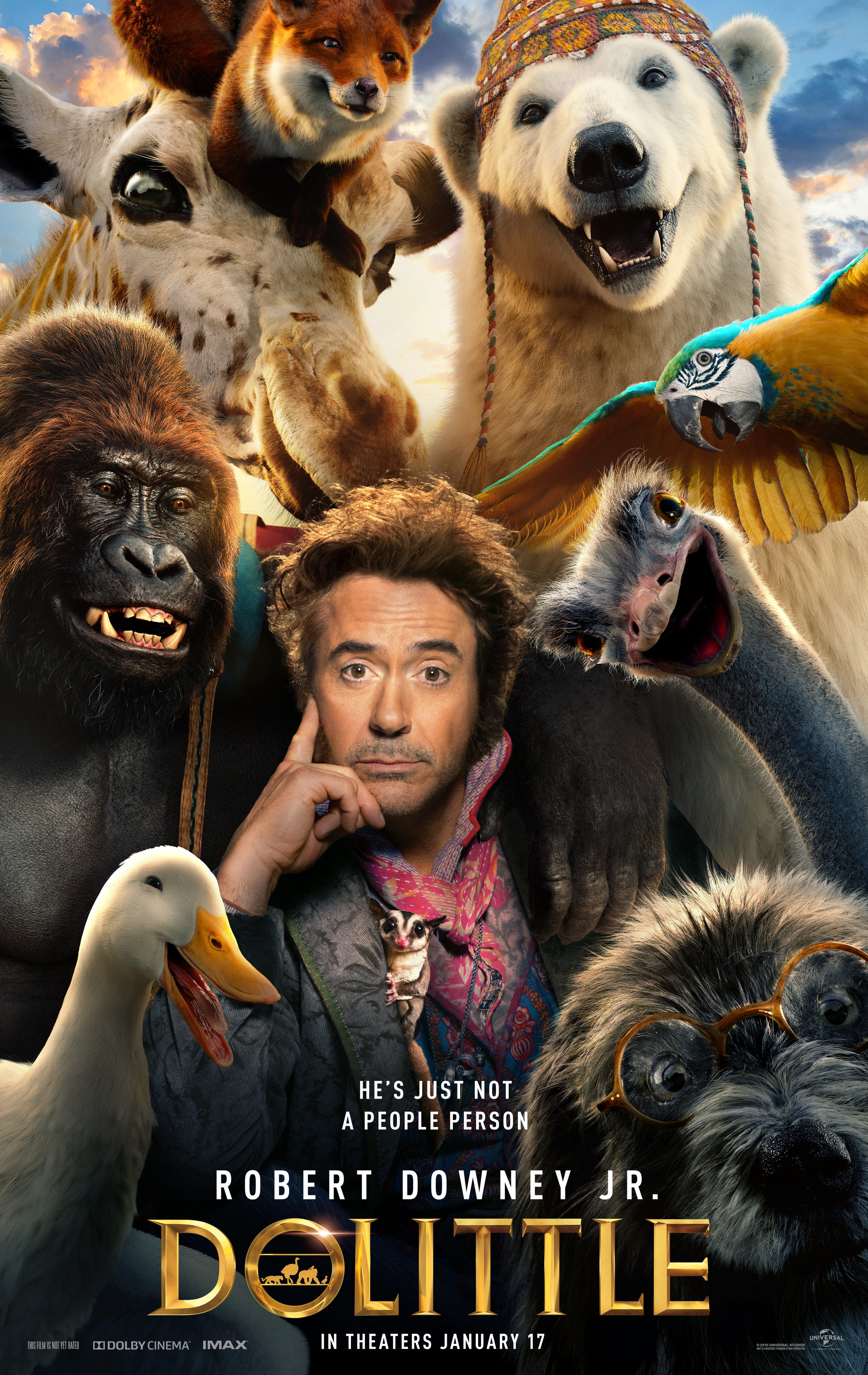 Dolittle Movie Guide To The Voice Cast Who S Playing Who Gallery Wonderwall Com