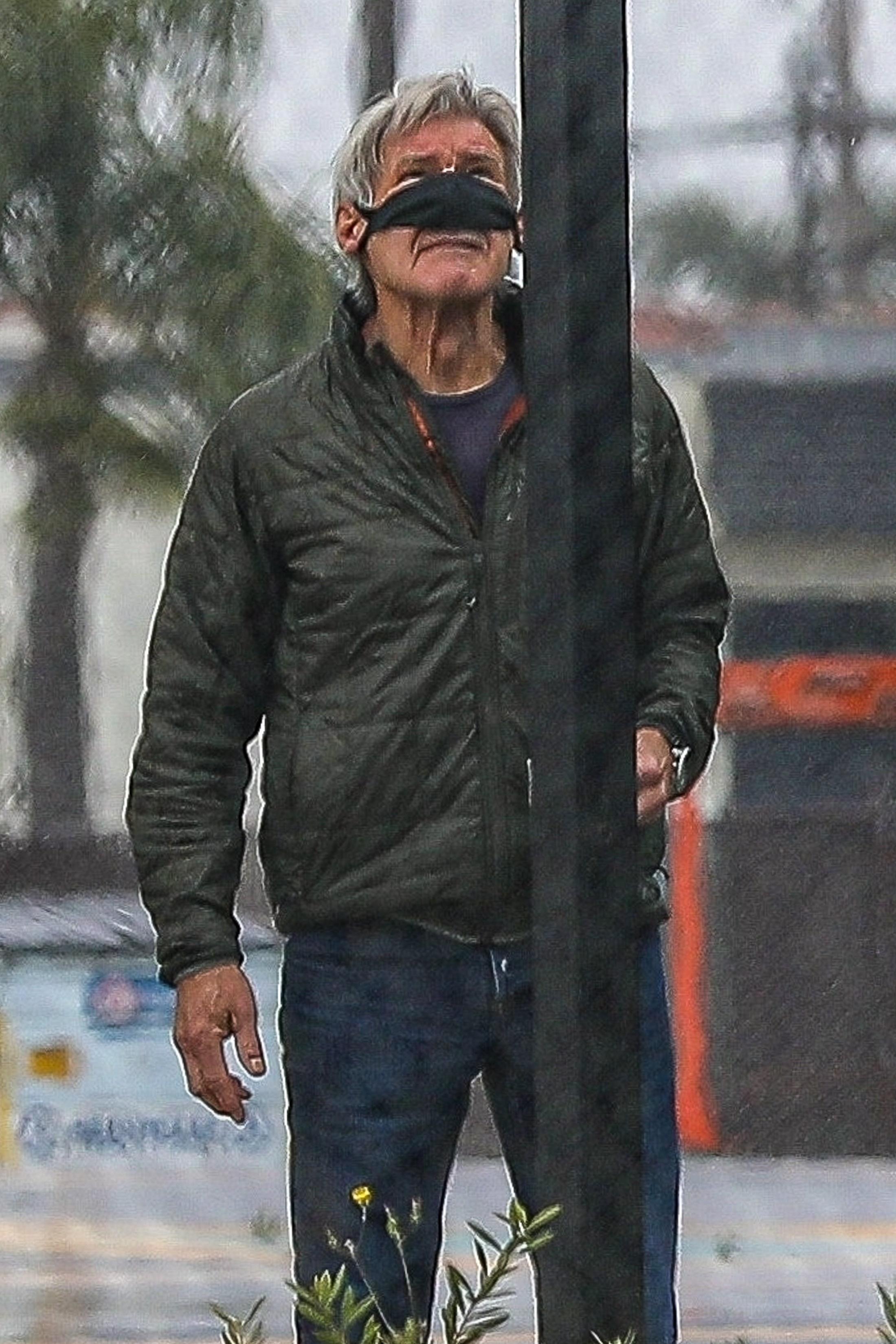 Harrison Ford mask