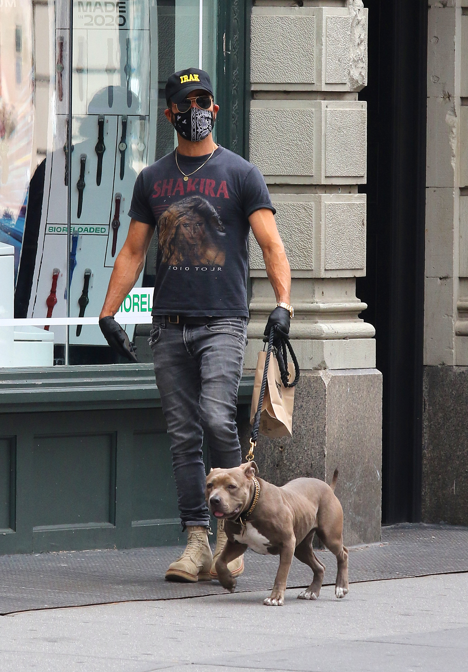 justin theroux dog