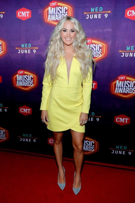 Pink, American Music Awards