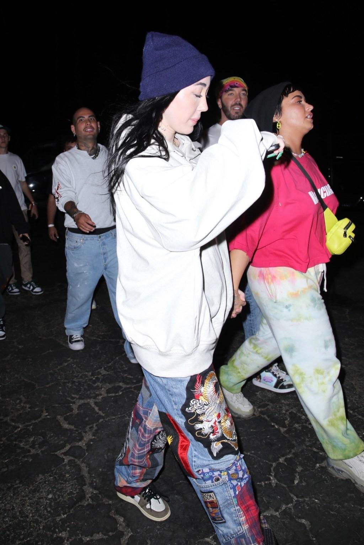 Demi Lovato aNoah Cyrus